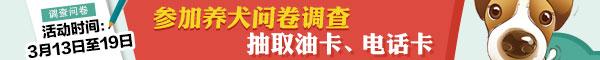 祝贺:东营李学忠登央视农民工春晚 与蒋大为等同台高歌 - 刘友朋 -  刘友朋